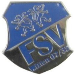 Pin FSV